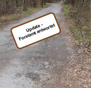 Update - Forstamt antwortet